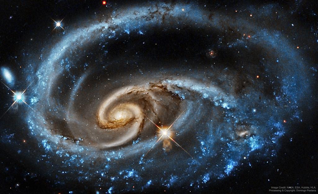 galaxiaaurea