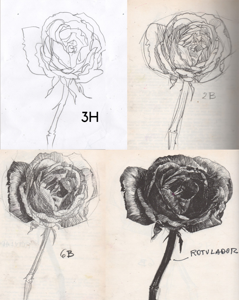 rosesproces
